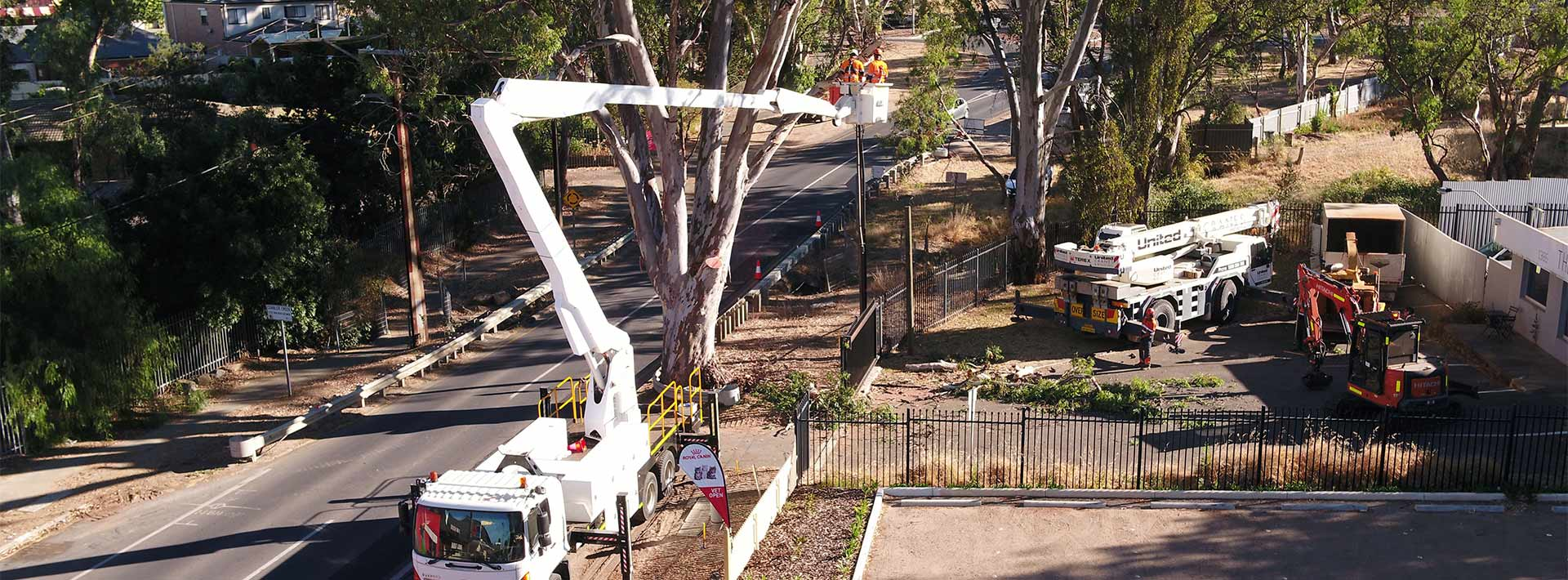 Austral Tree Solutions workers high up in a boom lift