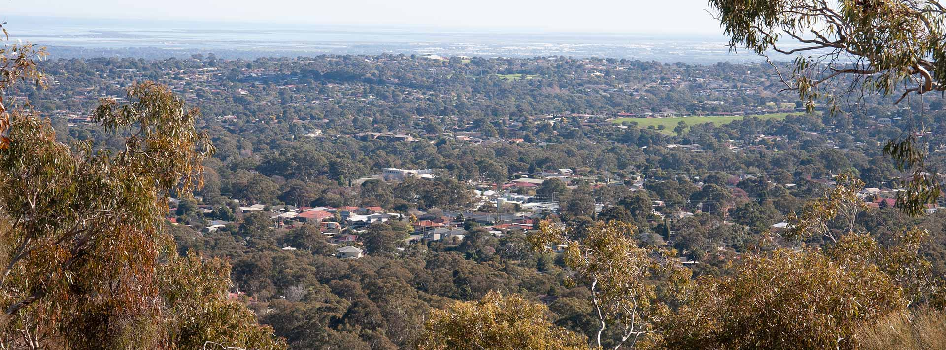View over Adelaide suburbs, with the ocean in the distance